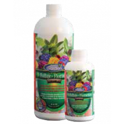 Fertilizante Follaje-floracion 1lt Best Garden