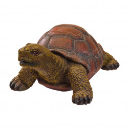 Tortuga Decorativa Jardin Bighouse