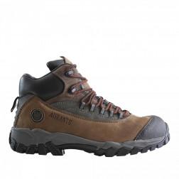 Zapato Seg Black Label N42 Edelbrock