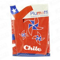 Delantal+guante Viva Chile